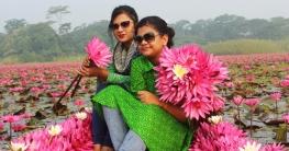 দেখি বাংলার রূপ ভ্রমন গাইড শাপলা রাজ্য-সাতলা