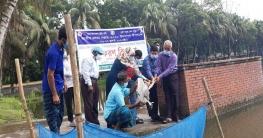 ভেদরগঞ্জে জাতীয় মৎস্য সপ্তাহ উদ্বোধন
