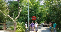 নড়িয়ায় পানিসম্পদ উপমন্ত্রীর সহযোগিতায় ৮২টি ল্যাম্পপোস্ট স্থাপন