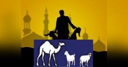 করোনা কালে কোরবানি: ইসলাম যা বলে